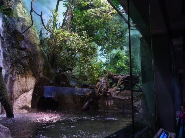渓流水槽 その2
