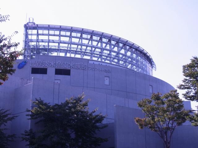 アクア・トトぎふ 日本と世界の淡水生物