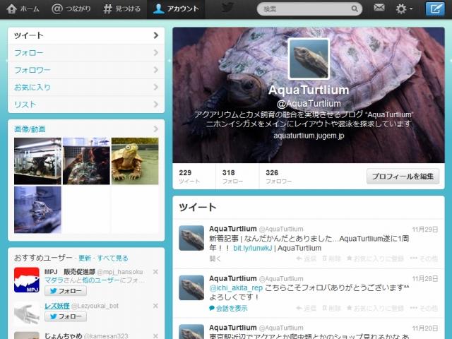 Twitterでイシガメの甲羅の白化の原因が明らかに