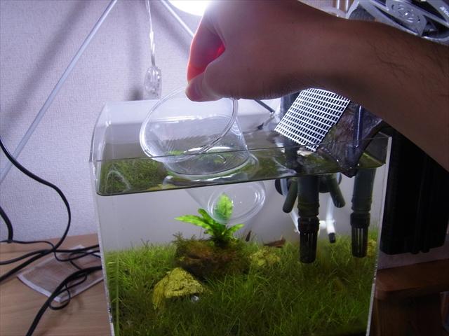 水槽から水を少し取り出す様子