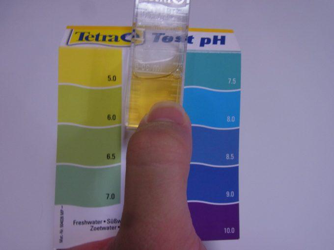 テスト溶液の色と最も近い比色紙の色を比較