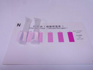 開発中のアクアリウム用水質検査薬を20cm水槽でも使ってみた