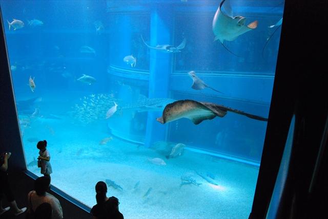 Osaka Aquarium Kaiyukan (海遊館 大阪)