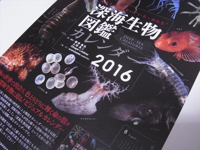 深海生物図鑑カレンダーのチラシ