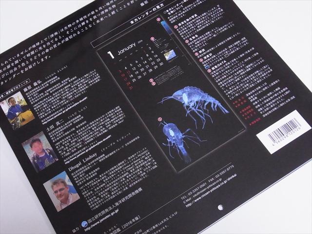 深海生物図鑑カレンダーの裏側