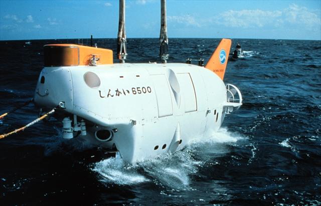 深海生物の謎に迫る!しんかい6500が暴く「飛び石仮説」とは?